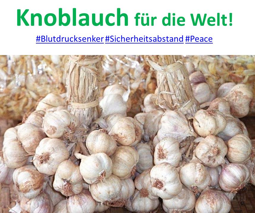 Knoblauch KK.png